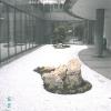 Zen Garten (1)