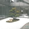 Zen Garten (3)
